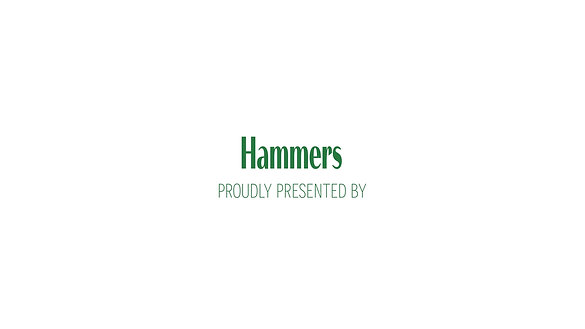 Block Able TV Ad (Hammer)