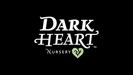 Dark Heart Nursery Exploratorium Event Recap