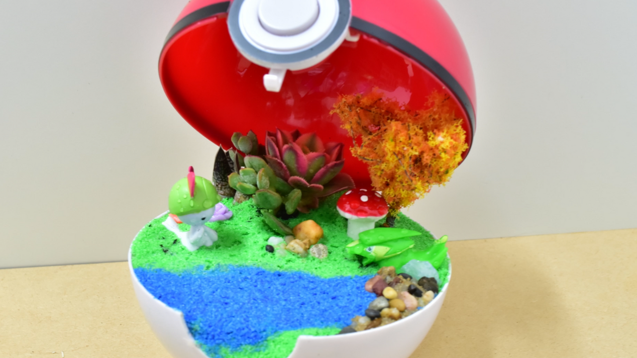 Pokéball Battle in Cerulean City