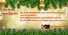 Felicitación Navidad y Año Nuevo 2021