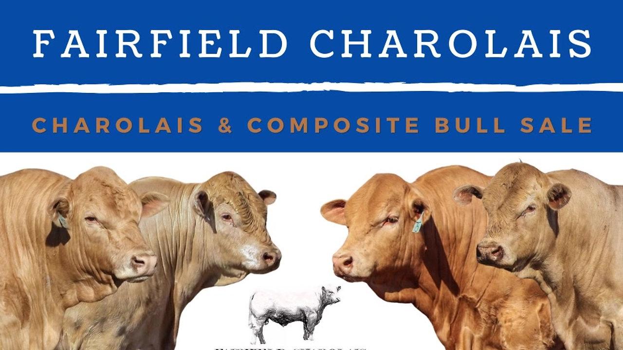 FAIRFIELD CHAROLAIS