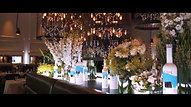 Belvedere X Janelle Monáe - Beautiful Future