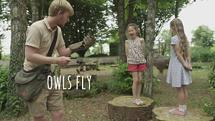 Hawk Conservancy TV Commercial