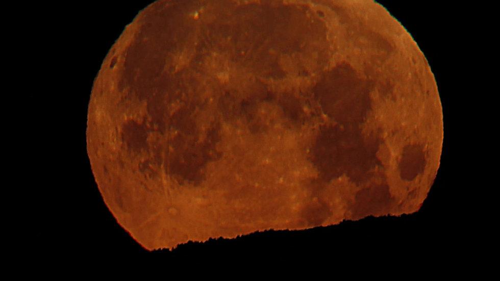 Puesta de luna azul-31-1-2018