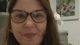 Introdução - Vanessa Castro