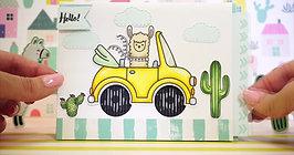 llama road trip