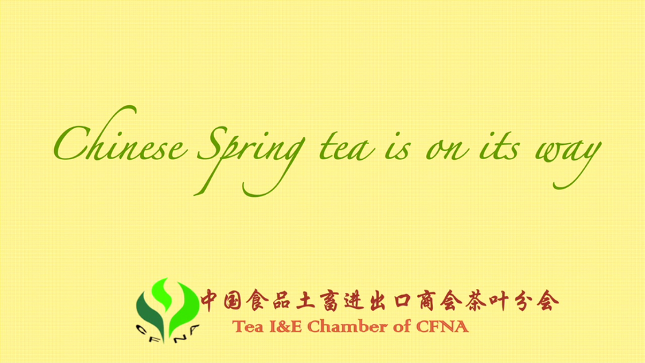 Chinese Spring Tea Is On Its Way!