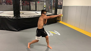 MMA/Boxing - Jab/Cross Ball Grab with Strobe Training Glasses