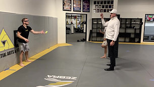 MMA/Boxing - Tennis Ball Track and Catch