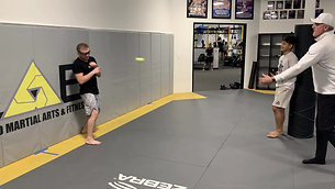 MMA/Boxing - Tennis Ball Dodge Drill with Strobe Training Glasses