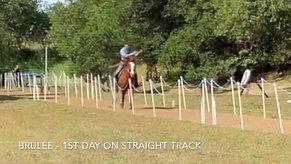 Adam Sewell Horse Archery