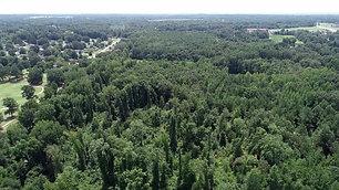 Jackson, TN Real Estate