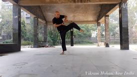 007 Vikram Mohan - choreographer, dancer - New Delhi