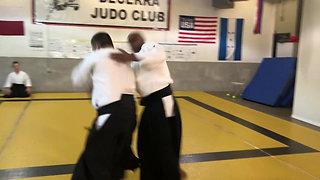 2020 Texas Aikido Seminar