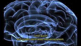 Neurofeedback und Leistungssteigerung