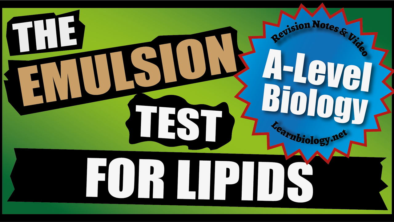 A Level Biology - The Emulsion Test for Lipids