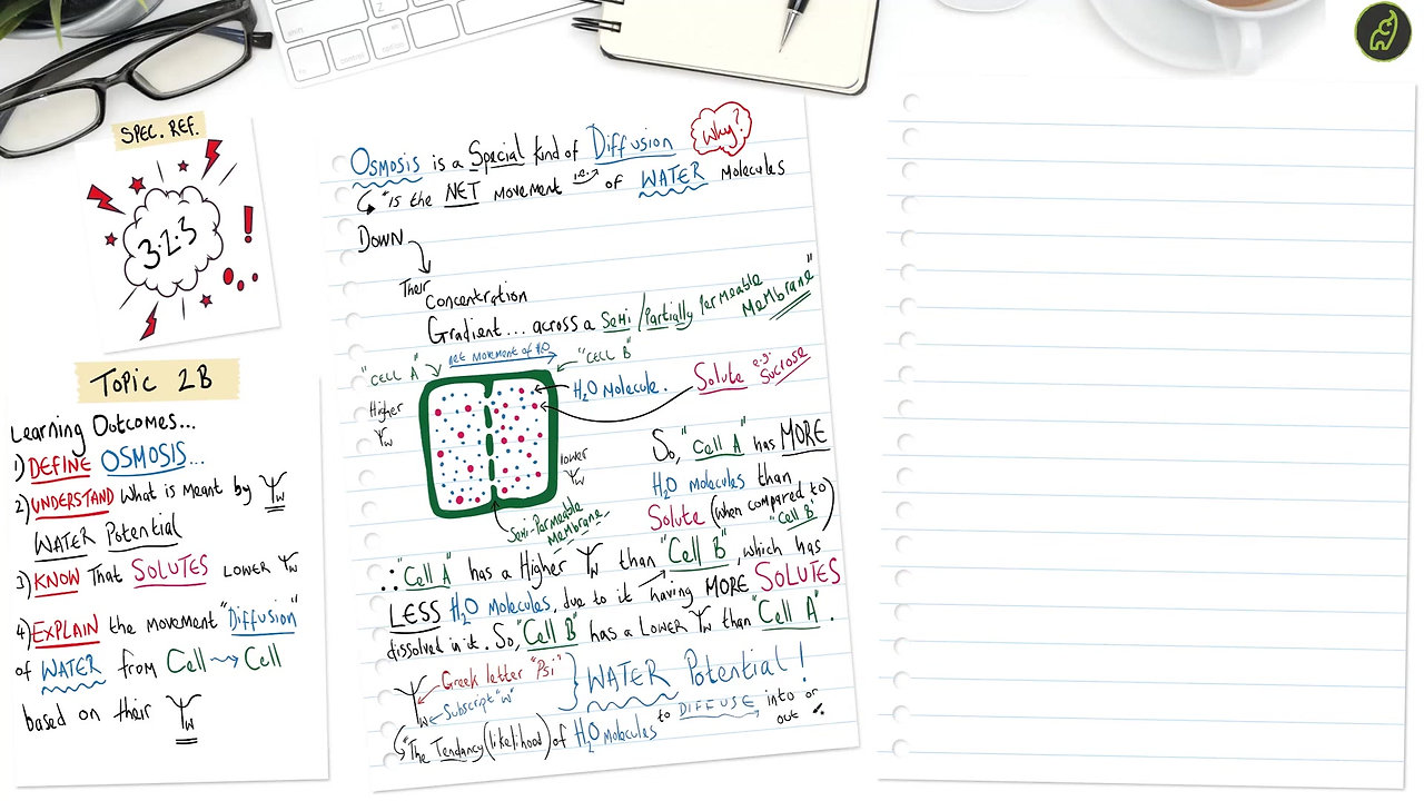 A Level Biology Osmosis an Overview