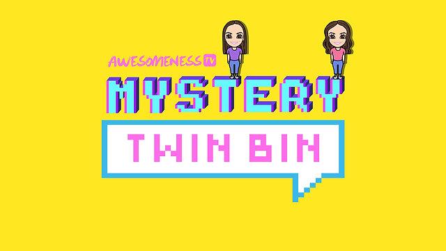 Mystery Twin Bin