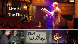 David Wilcox | Live At The Fitz