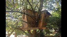La grande cabane dans l'arbre