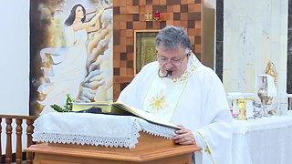 Homilia -  Missa de Natal 25.12.19