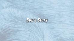 Bob   K9 Story