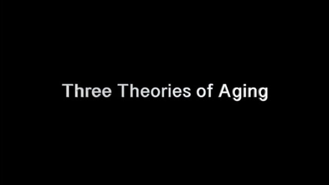 3 Theories of AGING