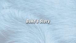 Duke | K9 Story