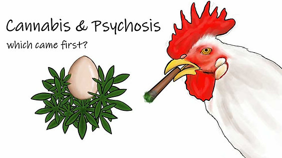 Cannabis & Psychosis - which came first?