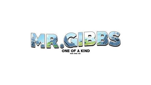 YouTube: Mr. Gibbs