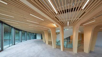Лучшие приемы и примеры естественного освещения в архитектуре