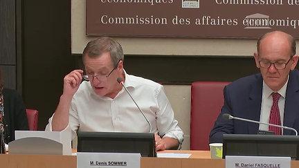 Commission des Affaires Économiques - 26 juin 2019