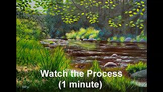 Vltava August - 1 minute process