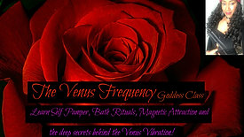 TheVenus Frequency
