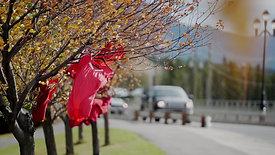 YAWC Red Dress 2020