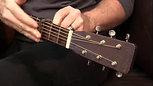 The Paige Original 6 String Acoustic Capo Standard Profile with Radius P6N P6E