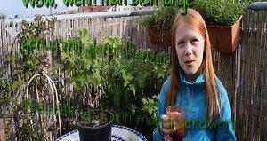 Pflanzeninterview Leni