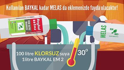baykal em2-ANİMASYON UYGULAMA  (1)