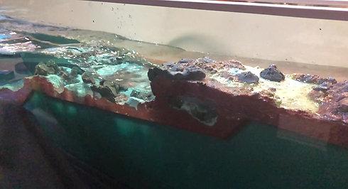 Random Sea test for blow hole #1