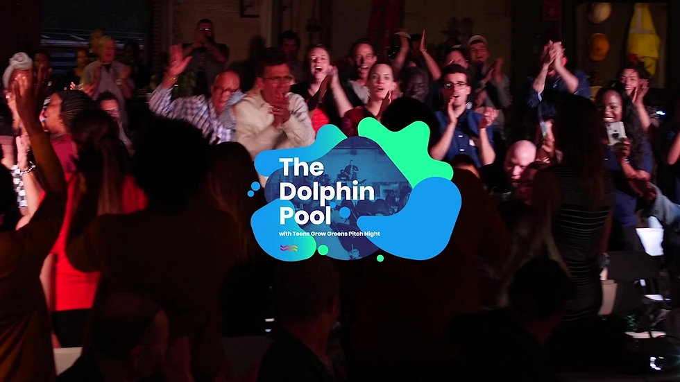 Dolphin Pool Alumni Video