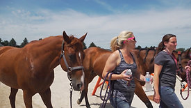 Promo Video - 3E Equestrian Facilities at the Walworth County Fairgrounds