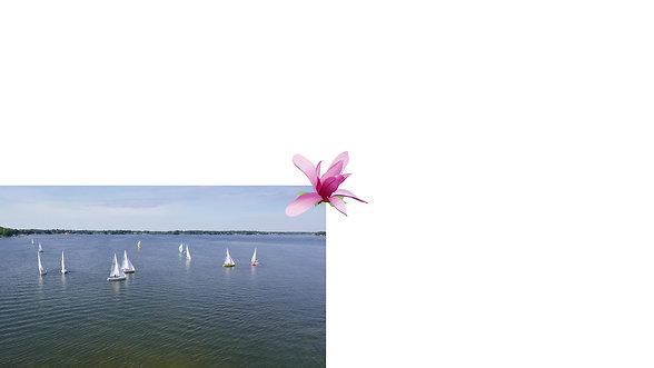 Cass Lake video