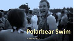 Polarbear swim  - Jan. 1st. 2018