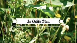 Le Châle Bleu