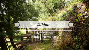 Athina - Clavier standard 3rg