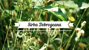 Sirba Dobrogeana_clavier Standard
