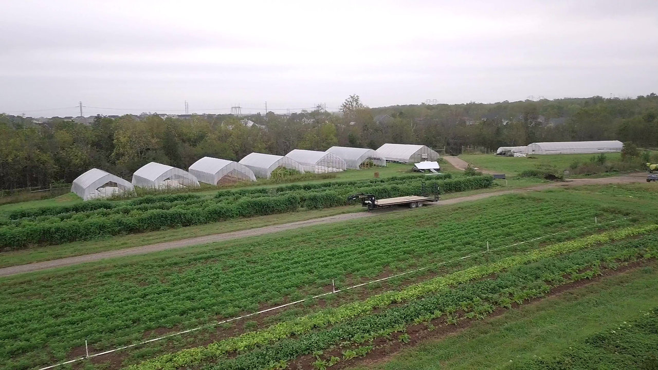 Community Farms