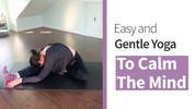 Easy Gentle Yoga to Calm The Mind