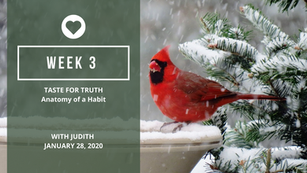 Week 3 - The Anatomy Of A Habit