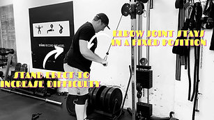 TRICEPS CABLE PUSHDOWNS